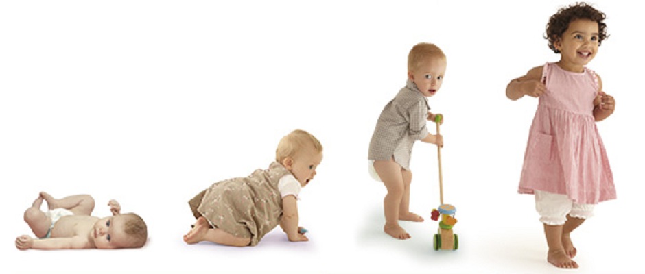 the different stages of child development from the prenatal to adulthood